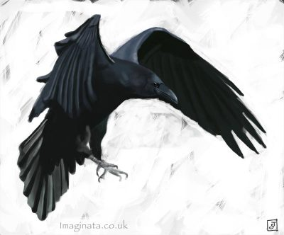 '10 Day Challenge - Animals Day 6 - Raven' - Digital Painting