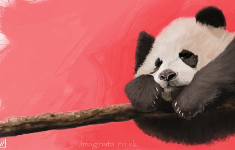 '10 Day Challenge - Animals Day 8 - Panda' - Digital Painting